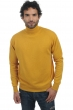 cachemire pull homme col roule edgar moutarde 2xl